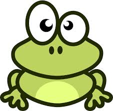 frog 6